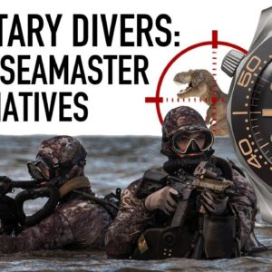 9 Omega Seamaster Affordable Alternatives: Military Dive Watches $200+