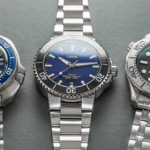 Dive Watch Comparison at Different Price Points - Seiko Willard, Oris Aquis, & Omega Seamaster
